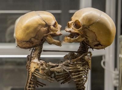 Museo di Anatomia Patologica